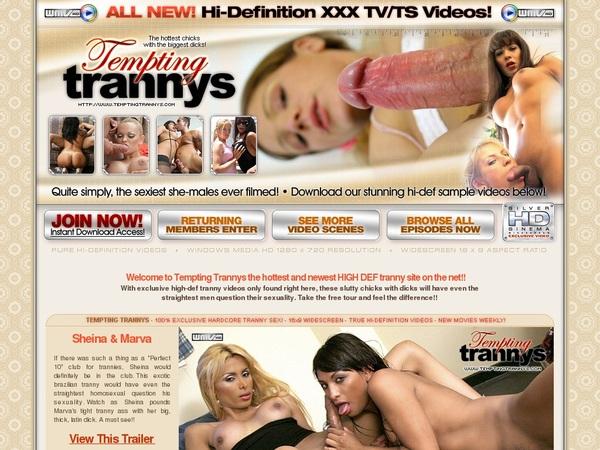 Temptingtrannys.com Episodes